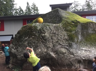 A new game - trying to get the ball to stay on top of the rock.