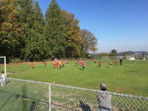 Boys soccer action at Sullivan