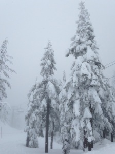 Snowshoeing at Grouse Mountain