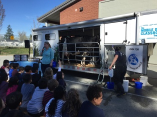 Mobile Dairy Classroom Experience