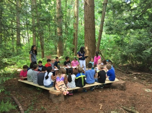 An art lesson in the outdoor classroom