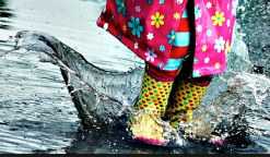 screen-shot-2016-10-28-at-9-34-38-pm