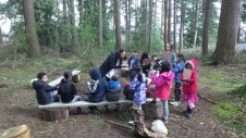 Exploring forest classroom